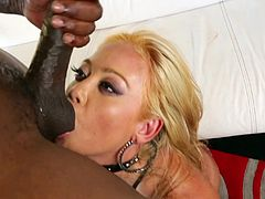 A gorgeous young blonde with long hair, big fake tits and a fantastic body enjoys sucking a stranger's massive black cock and balls.