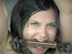 Yeah, this abbe looks good all tied up and mouth gagged. The executor knows precisely what he's doing and bends her over to take care of that wet, slippery pussy. Maybe he will try to fit something inside her, something way to big that will stretch that tight cunt and make her moan with pleasure and a lot of pain