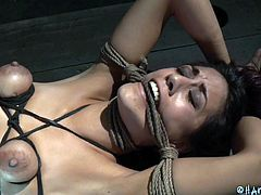 Tied tight and with her tits squeezed with rope, Lyla is at the complete disposal of her black executor and things are not loosing up for her. This bitch had it coming and now the black dude will take advantage of this situation and use her in every way imaginable, so he raises her leg and starts with a dp!