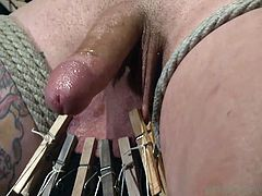 Pretty gay whore Reed is tied on a chair and the executor plays with his balls. He attached laundry pliers all over his balls and pulled them with strings, making the pain a lot more intense. Reed screams like a little bitch and loves it! What else will he have to endure next? Stick around and find out!