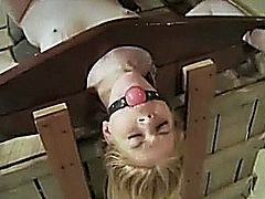 Lesbian femdom spanks waxes fists and masturbates her submissive