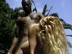 Jacqueline Wild sits on big black cock. They are to give you one hardcore whacking for you to enjoy. Be fervent and lewd as Jacqueline gets fucked by a big black dick.