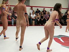 These sexy lesbians are all in the ring fighting to see who is the best. Two of the girls put each other in a scissor hold, and then all the other girls run in the ring. They try to pin each other down and sit on each other's faces. The weaker ones have to eat pussy.