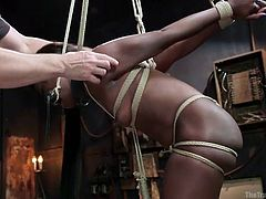These dominating men have this cute ebony slave tied up tightly in rope. One of them spreads opens her pussy lips to see the pinkness inside of her. He slides his thick cock into her delicious pussy hole. She chomps on the bit as she is fucked like a dirty sex slave from behind.