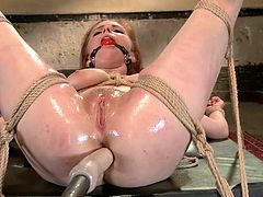 penny punished and bonded