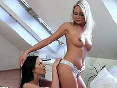 They play with their shaved pussies to masturbate in a hot and wild pussy blowjob scene. It was a hardcore pussy fingering and sex toy insertions.
