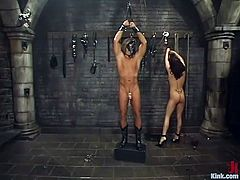Tory Lane has her slave all tied up with no where to go. She roughly grabs his big dick and pinches his nipples.. She uses a whip and flogs his chest until it's sore. She kicks her slave with her high heels and pulls on the rope that is attached tightly to his penis. How painful and humiliating this is for him.