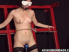 The hot stud likes to play with an Asian pussy in BDSM masturbation and gets a little nasty and wild with sex toy insertions in bondage.