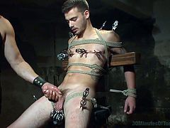 A sadistic master made Trevor his sex slave and hides him down in the basement where the captive guy experiences a continuous torment. He is strongly tied up in a powerful rope bondage. The pain becomes more vivid as clamps are attached to Trevor's nipples and balls. Get thrilled watching the handjob scene!