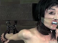 Tied up tattooed brunette whore gets her pussy punished