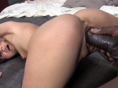 Rapacious brunette slut Kelly Klass blows thick black dick greedily