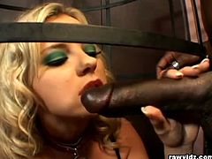 Raw Vidz brings you a hell of a free porn video where you can see how the naughty blonde Bree Olson gets enslaved and fucked by a horny black stud til she cums.