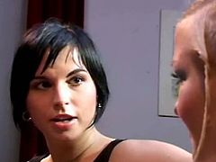 Brutal Catfight brings you a hell of a free porn video where you can see how these blonde and brunette bitches fight and get fucked deep and hard into massive orgasm.