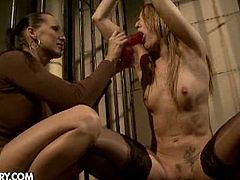 Mandy took Andy Brown down to the dungeon to try her out and see how much torture this girl could take. Mandy tied her up and started in on her pussy and before long she was screaming in agony. But she likes how good it feels when Mandy makes it hurt so good in all the right spots - Mandy isn't the master of domination for nothing!