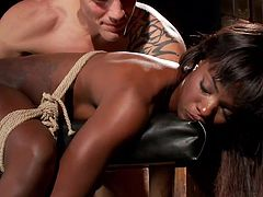 This bound slut is banged so hard in the dungeon, that she is crying. She is bent over the stool and rammed hard from behind, by her master's giant cock. She takes as much, as she can handle. She is a trooper to take so much torture.