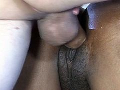 Dick takes pounding, as it enters the vicinity of hot Ebony boobs. Pussy is pounded, and both races face cum at the same point in time.