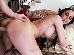 Brandy Aniston with huge tits and trimmed muff has oral fun with horny dude