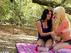 Horny teen lesbians Natalie Heart and Zoey Paige pussy lick and facesit at their outdoor picnic