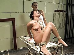 Brunette Mandy Bright and Bettina Dicapri spend their sexual energy together