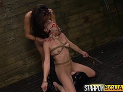 The dungeon's atmosphere is a mixture of pleasure and pain. There's a hot slave tied up and bonded with ropes in a sexy position. The ball gag in her mouth is taken out, only to facilitate the access of a strap on, which she is persuaded to suck deep, whether she wants it or not. Click to enjoy the kinky scenes!