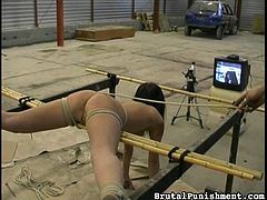 A severe dominant guy masters the art of brutal punishment, using his harsh methods on a brunette slutty slave. The naked bitch with small tits has been strongly tied up in a fierce rope bondage. The torture begins with whipping her pretty ass. Click to watch the kinky details!