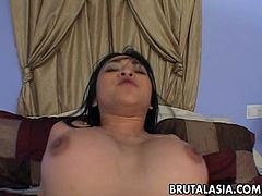 Busty brunette Asian hottie is on the pecker trying out how deep should it go and soon she realizes the cock is just too big for her. Then, the sex starts.