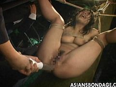 Looking like a sacrifice the Asian babe is hanging on ropes and the group uses toys on her wet pussy so the sex Gods become pleased.