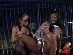 This hot threesome tube vid is about Ebony gals and big black cock. tthis chab activity is really hard and  hawt.
