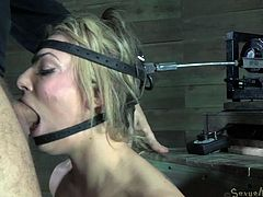 Hungry freak mouth fucks sexy blond chick bolted on the sybian