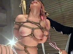 Japanese pussy has attached inside suspension all over your pleasure! She has abused by sticks and stuff, She screams for more! the goot masochism and tied sex video