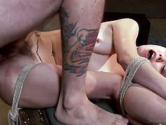 fortuneless helpless paige