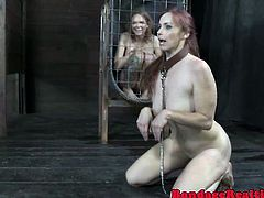 Puppyplay sub plays fetch with her dom