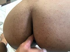 Super sexy shemale babe has small tits, but big round ass and she gets ass fucked from behind, in pov. After getting pound for a while, ladyboy rides on the cock and gets fucked with jiggling her tits. Later, transsexual lady gets anal sex in sideways and starts jerking off at the same time.