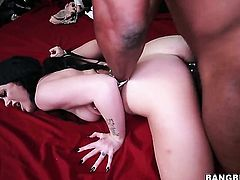 Andy Sandimas and hard dicked guy do dirty things in interracial porn action