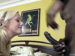 Wesley Pipes gets his always hard tool sucked by Molly Rae