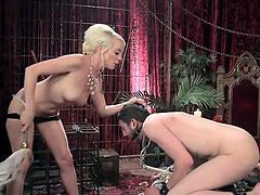 dominant blonde bitch punishes her partner