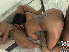 Two lovely ebony babes put on a sexy