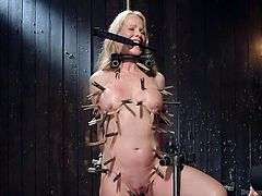 If you're into horny milfs, who look for adventurous thrills, see Simone experiencing orgasmic pleasures. The blonde slut is the prisoner of a kinky bondage device, while numerous clothes pins torture her body parts. This bitch is awfully tormented, when her naughty cunt is aroused with a dildo and a vibrator.