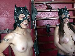 Two wild kitties in a red room, whip and a bag of money- let's see what happens! Today, we wandered the streets, looking for great entertainment for you. And here they are, ready to do anything for a purse stuffed with cash. We begin, it will be interesting!