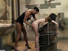 Brunette Ann Marie La Sante with gigantic hooters and lesbian Mandy Bright are horny for each other