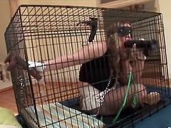 Chained sex slave Kiara Marie in her cage
