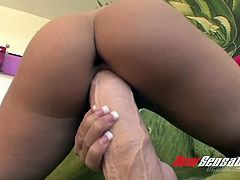 Pretty brunette bitch Tweety Valentine rides thick fake dong with passion