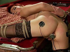 Playing with electrodes seems a good idea as long, as the brunette dominant bitch intends to punish her lesbian hot partner. Click to watch the sensual redhead slut tied up strongly with ropes, while laying with her legs spread on the kinky billiards table. The closeup of her peachy pussy is so exciting!