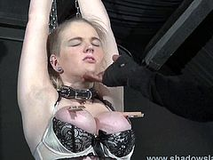 Blonde slave Carly Raes rough blowjob and tied torments