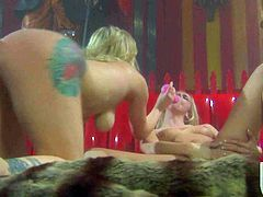 Adrianna Nicole, Kelly Wells and Stormy Daniels play together