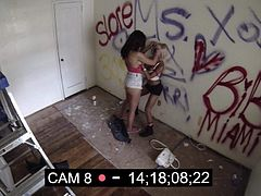 Aidra Fox and another bad girl do lewd things and have passionate lesbian sex right in front of security camera. Watch unsuspecting blonde and brunette play with each other.