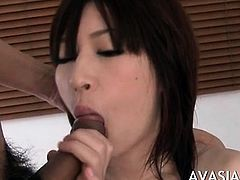 Specialist jap escort getting her pussy slammed doggy style