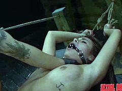 This naughty girl is tied up in the dungeon like a slave, and her master uses a vibrator on her pussy, to make her moan loudly. She squirms around, but she cannot break free, because she bound. The master ties her rope leash to the pole and face fucks her hard.