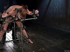 Bianca's not going anywhere as she's locked into this steel device. Her executor has a vibrator on her clit and he rams a dildo on a stick in her pussy. She moans and screams so loud and cums several times. He pulls the dildo out, so she can suck her juices off, before putting it back in and pumping her.