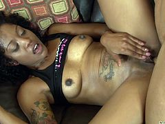 If you're fond of slutty bitches with chocolate skin, check out naughty Lotus Rain, a versed ebony lady with beautiful boobs and crazy ass. Click to see this curly tattooed brunette, spreading legs and sucking cock passionately on the comfy couch!